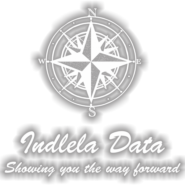 Indlela Data Logo